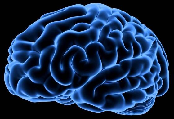 http://zeforums.com/images/ze-forum-cerveau-etat-psychologique-et-physique-interactions.jpg