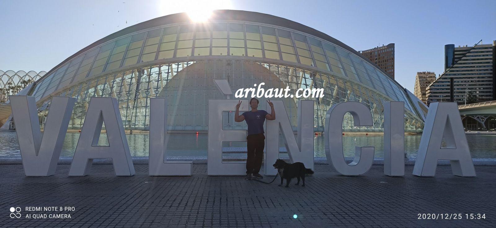 http://zeforums.com/uploads/images/pierrearibautzetradervalenciavalenceciteartssciences25decembre20201_1610051041.jpg